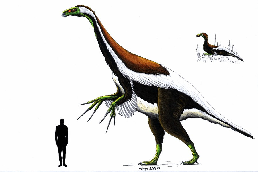 therisinosaurus_900x600