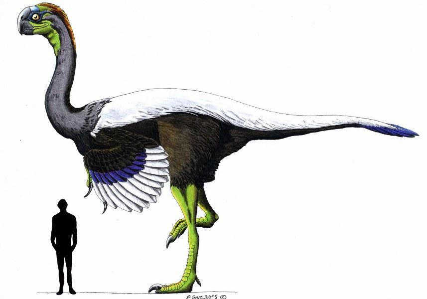 gigantoraptor_857x600